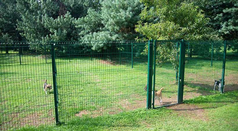 Recinzione Per Cani Giardino.Recinzioni Per Cani In Giardino Recinti Elettrici Geo Box Per Cani
